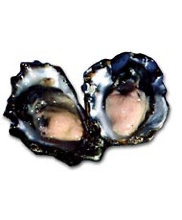 Fanny Bay Oysters (120 ct)
