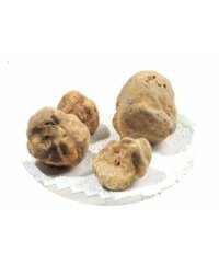Imported White Itaiian Winter Truffles