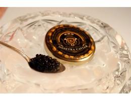 Bulgarian Osetra Caviar (1 oz tin)