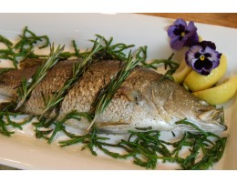 Whole Barramundi (1.25 lbs each)(25 lbs/case)
