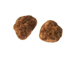 Italian Spring Truffles