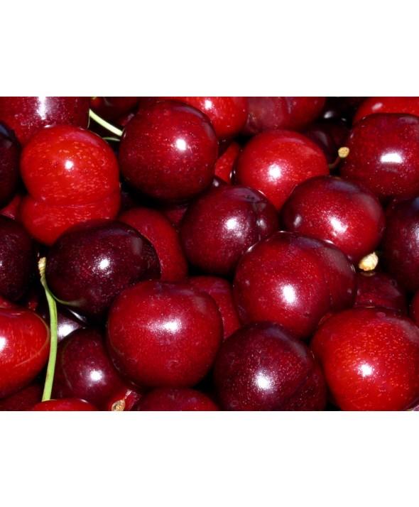 Cherries- Chile