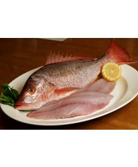 Whole Red Snapper (2-4 lb)