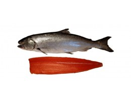 Wild King Salmon (12-18lbs)