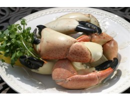 Stone Crab Claws (5-7 pcs/lb)