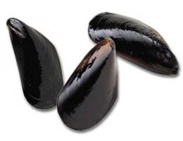Mediterranean Mussels (15lbs)