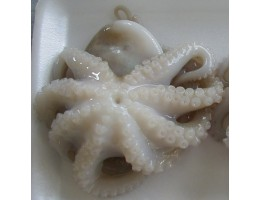 Octopus (Whole)