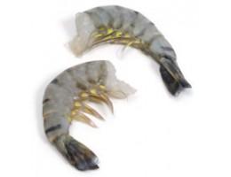 Black Tiger Shrimp (16/20)(P&D)