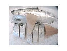 Alaskan Ivory King Salmon (15-30lbs)
