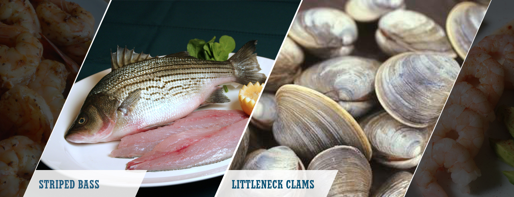 Distributor of Seafood, Beef, Poultry | Prawnco
